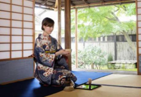 Museum of Art Japanese Green Tea Ceremony